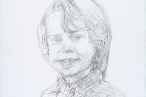 Drawn from photos