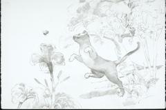 Catraptor