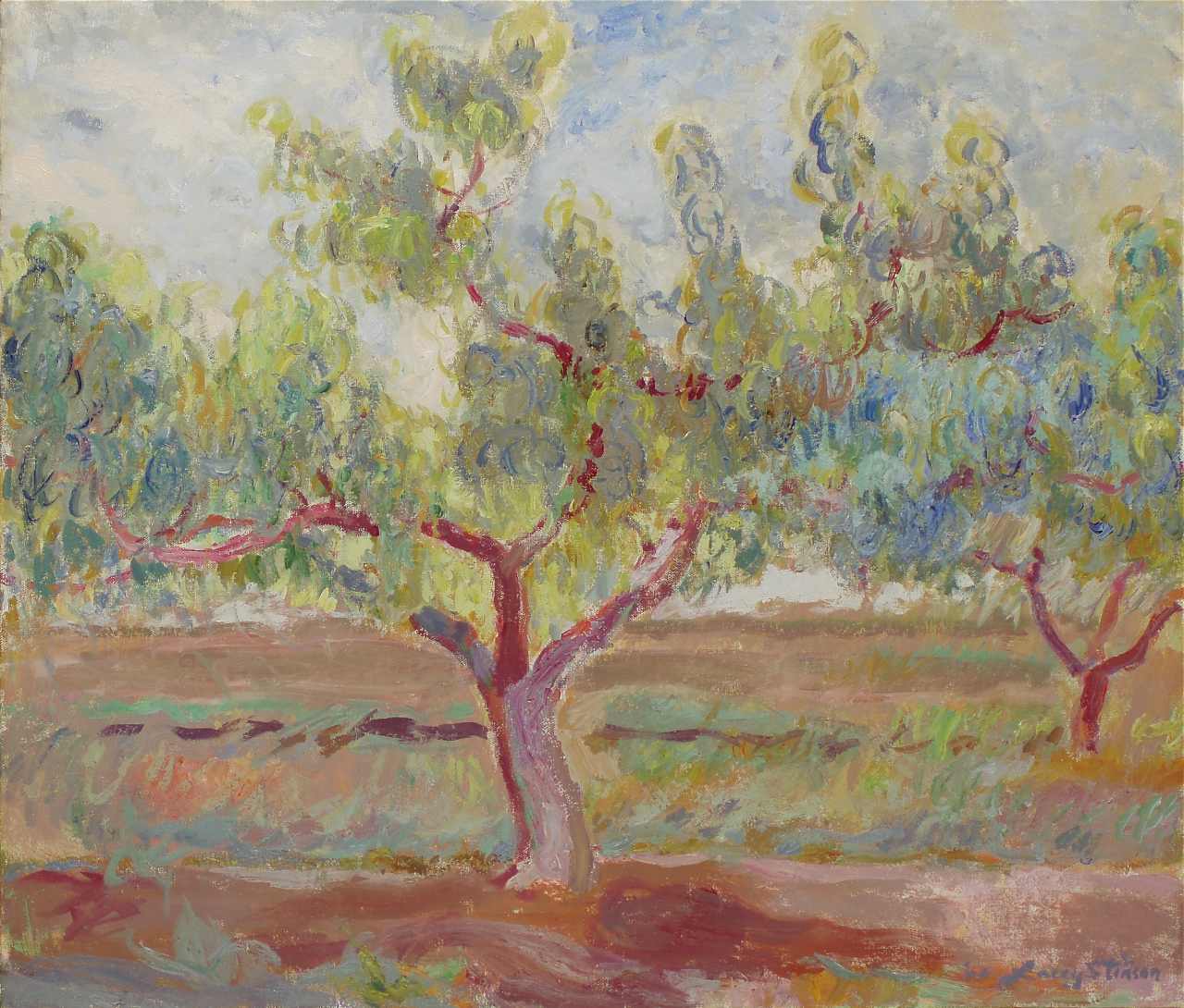 Peach Tree in South Orchard