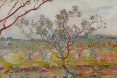 Peach Tree 2