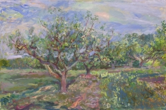 A Year and a Day in the Orchard