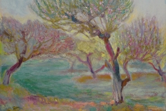 Farmerville Orchard