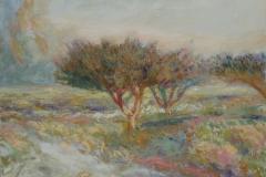 Misty Orchard