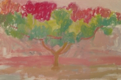 Orchard Trees, Pink