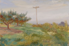 Orchard with Pole