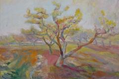 Peach Tree Gold