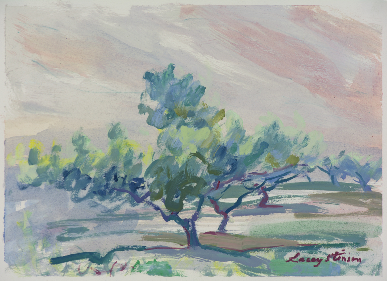 Tree in Shade in Lower Orchard - Study